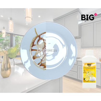 BIG+ Dishwashing Liquid (1000ml) Concentrated pH Neutral Natural Plant Ingredients Biodegradable Non Toxic
